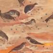 雀は生き生きと、可愛らしく、そして優しく見えました。 【A4/岩絵の具、雲肌麻紙】