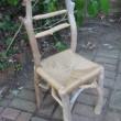 流木の椅子 Mieko