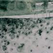 組織における膨大なる歯車の一つ 人として私をつくる膨大なる細胞の一つ【44×34(cm)/リトグラフ】