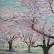学生時代、同級生と一緒に写生に出かけた公園で咲いていた満開のさくら。 そのさくらの下で過ごした友達との楽しい日を思い出しながら。【150×100mm /絹布、絹糸】
