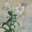 初めて触れる日本画の画材に心躍らせ、白百合の瑞々しさを体にうんと吸い込んで筆先に込めました。はじまりのエネルギーや純粋な希望は白百合の魅力そのままです。【530x455mm /岩絵具】