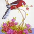 【山下 一美/Yamashita Kazumi - 薔薇と遊ぶアカクサインコ/rose and red parakeet】私のペットが薔薇の花と遊ぶ姿をイラストしました。この鳥はとてもイタズラで、花などを与えると楽しそうにクチバシでクルクルと回している所を眺めて居るだけでハッピーな気分になります。 [テキスタイル・デザイナー]1940年横浜生まれ、1955年父親の指導で横浜スカーフのデザインを始めて58年、スカーフはベイズリー柄を得意とし、横浜スカーフコンクールでは神奈川県知事賞など数多く受賞、現在は動物(猫、犬)、花模様の絵、クラフト制作、小さな銀杏の雛人形などを制作しております。〈257×364mm /ケントボードB4、drawing ink、ポスターカラー〉