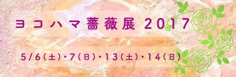 ヨコハマ薔薇展2017