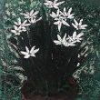 リュウ・イヨウ(Liu yiyao)【中国】:窓外/Outside the window ー ふとある時ベッドに横になりベランダの植物を眺めていた時のことから生まれました。【200mmx200mm/漆、卵殻】